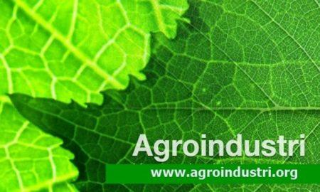 ilmu agroindustri