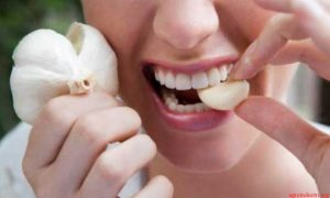 manfaat bawang putih bagi kesehatan
